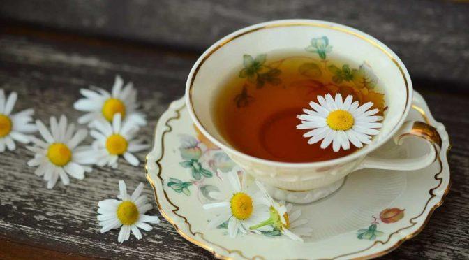 Warmer Tee im Sommer: Das ideale Erfrischungsgetränk